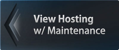 hosting with maintenance